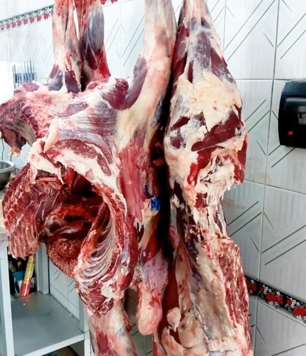بهترین قسمت گوشت گوساله برای کباب و ابگوشت و خورشت